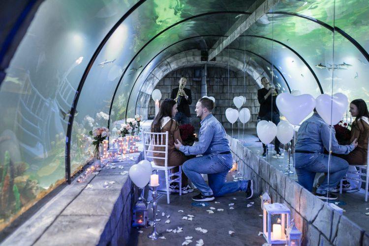 Фантастичне освідчення в океанаріумі
